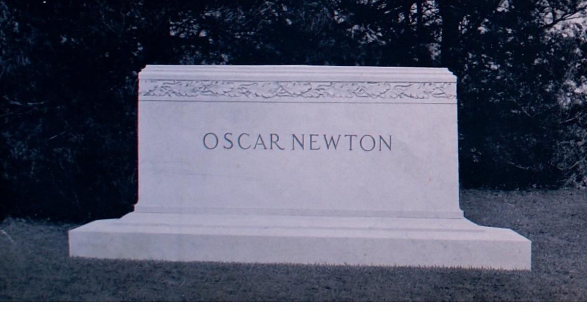 newton-001